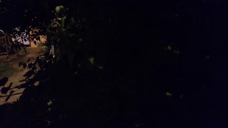Intex_Aqua Ace_camsample_night_ndtv.jpg