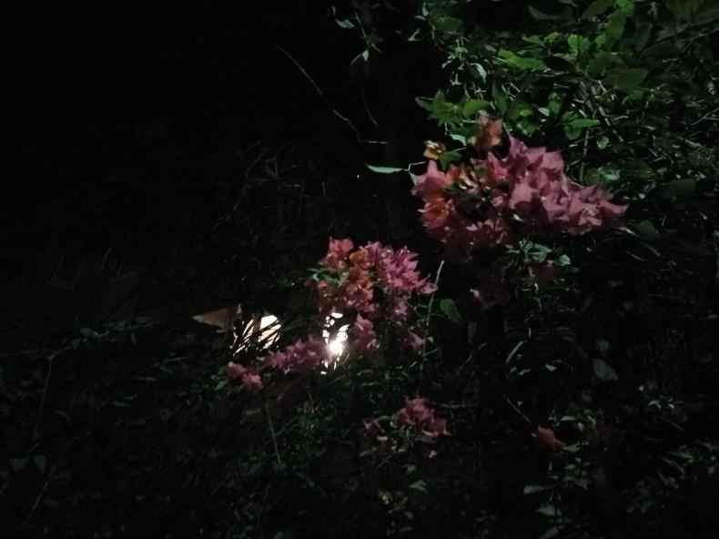 le_eco_le_1s_camsample_night2_ndtv.jpg